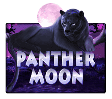 เกมสล็อต Panther Moon