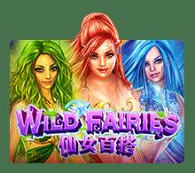 เกมสล็อต Wild Fairies